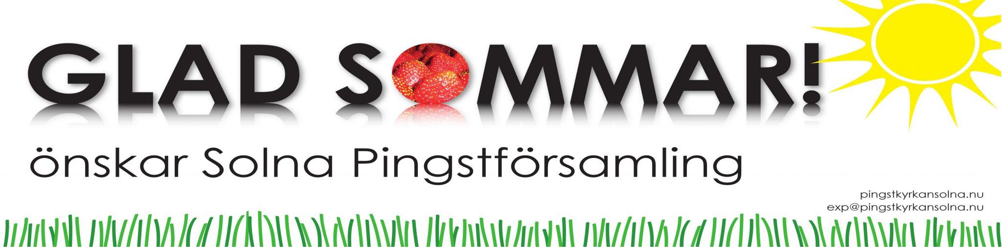 Sommarbanderoll2012